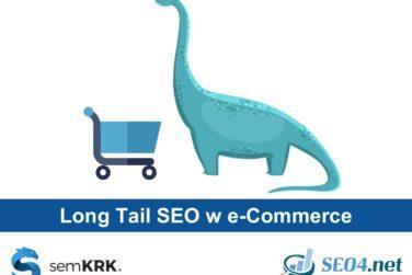 Pozycjonowanie i optymalizacja - Long-tail w e-commerce